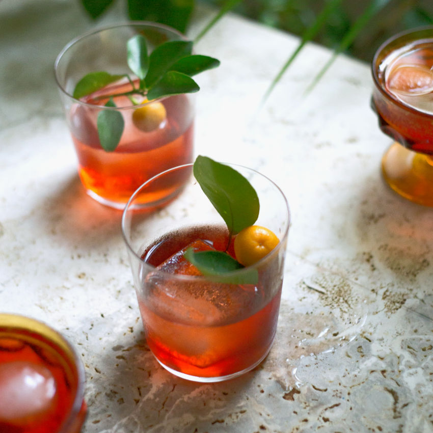 Mezcal Negroni Cocktail Recipe